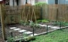 How To Create A Vegatable Patch From Scratch, gardening advice